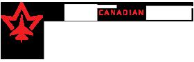 SkyAlyne Logo